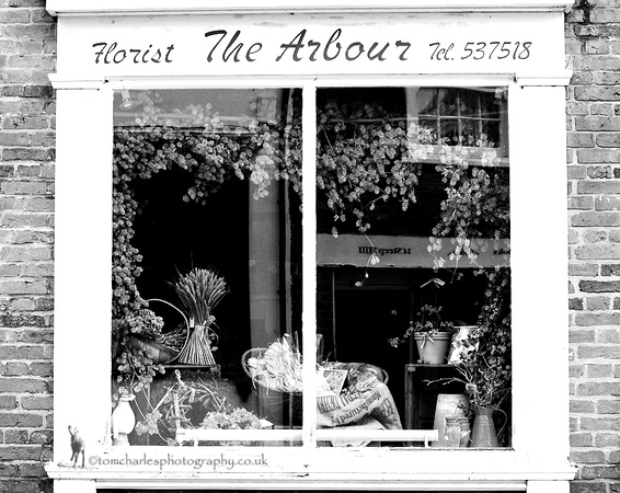 The Arbour