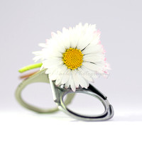 Ring-Pull and Daisy